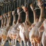 A staff member works at a poultry slaughterhouse in Changzhi